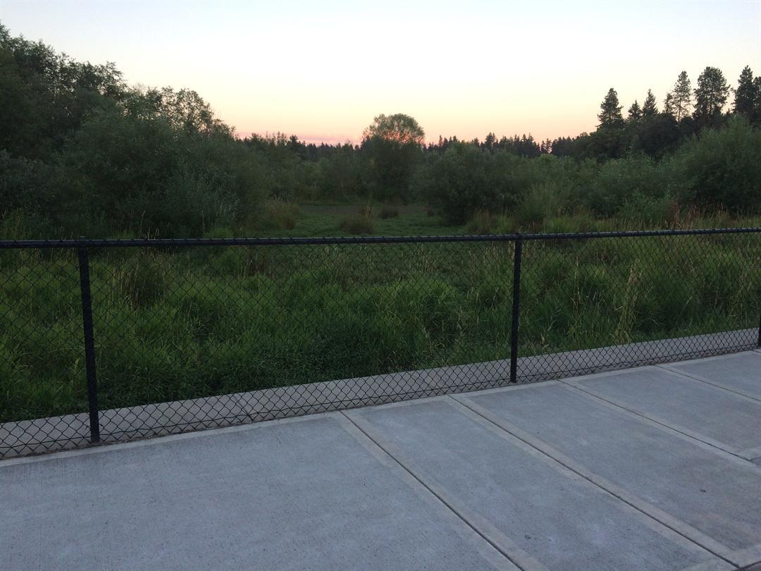 Area where cougar was seen (Courtesy: Tigard Police)