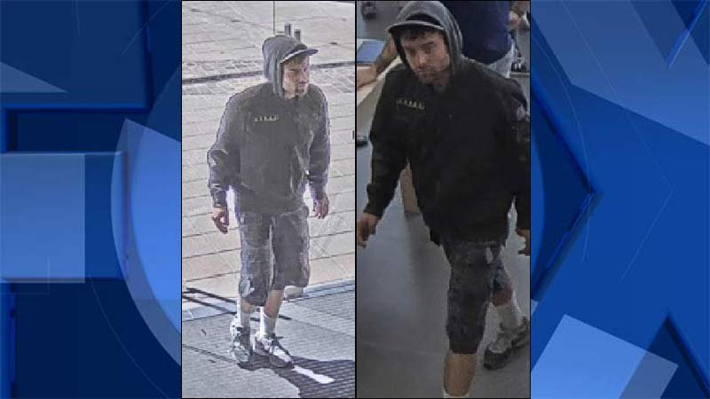 Surveillance images of theft suspect (Tualatin Police Department)