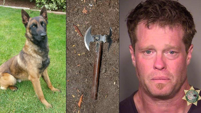 From left: K-9 Jager, hatchet seized as evidence and jail booking photo of John P. Lewis. (Photos: Portland Police Bureau)