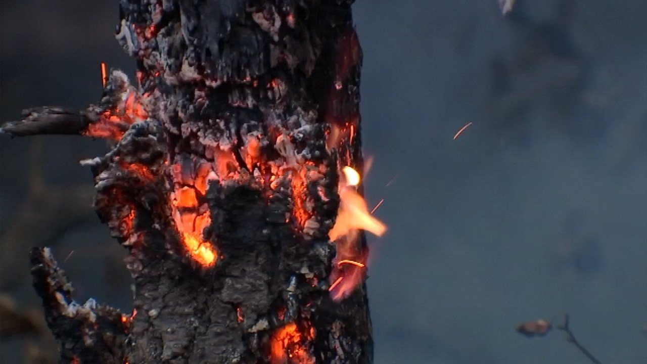 Eagle Creek Fire, KPTV file image