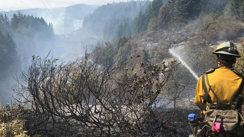Firefighters battling the Scorpion Fire in Marion County (Photo: U.S. Forest Service)
