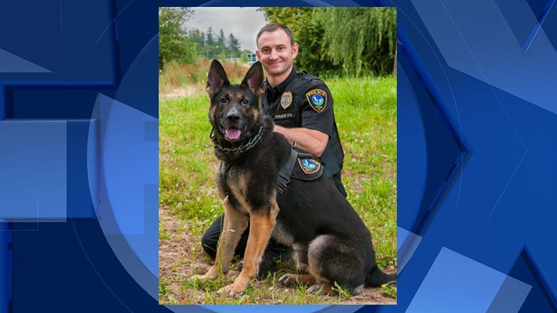 K-9 Diesel and Tigard Police Officer Michael Powers (Tigard Police Dept.)