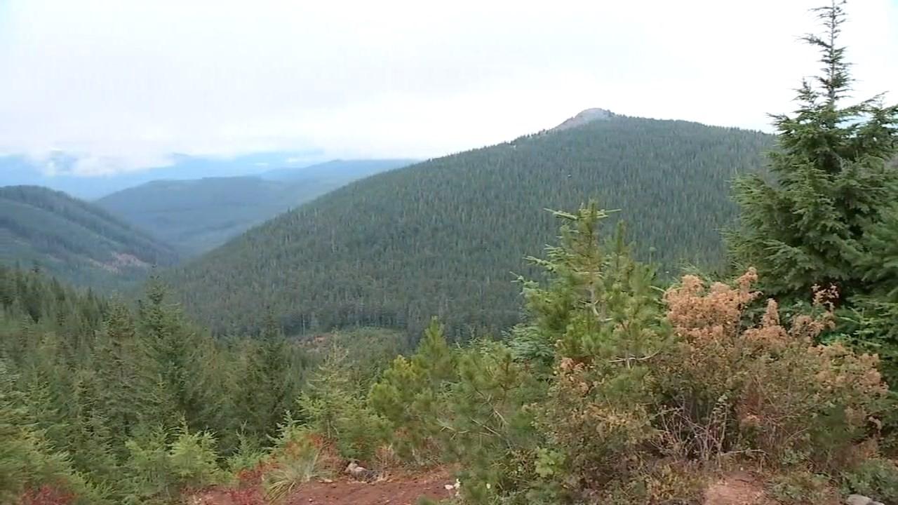 Mount Hood National Forest (KPTV)
