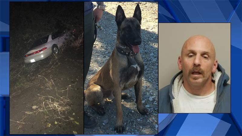 From left: Crash near Clatskanie, Columbia County K-9 Lars and jail booking photo of David Hunter. (Images: Columbia County Sheriff's Office)