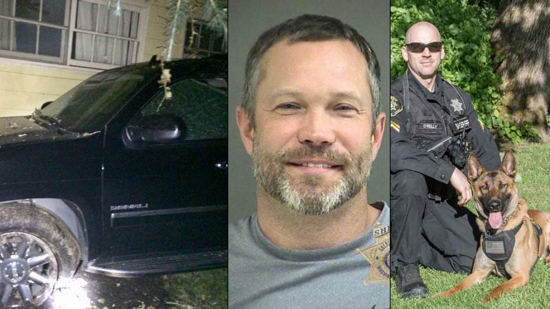 Crash scene on Scholls Ferry Road early Wednesday morning; Anthony Magden jail booking photo; Sgt.  Eamon O'Reilly and K-9 Radar (Photos: Washington County Sheriff's Office)
