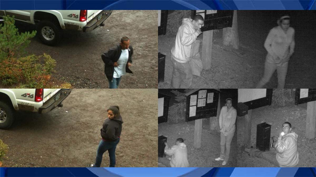 Surveillance images of theft suspects in Mount Hood National Forest (U.S. Forest Service)