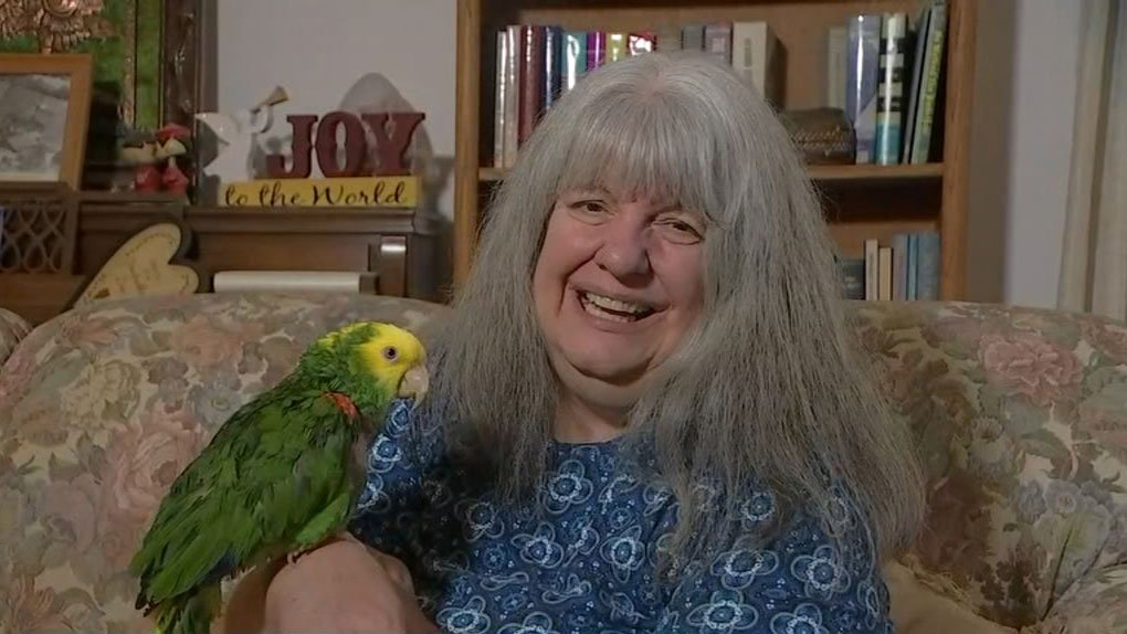 Deputy investigates calls for 'help,' finds parrot