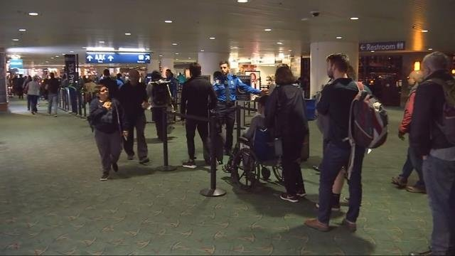 Turkeys and travelers making their way through busy day at PDX