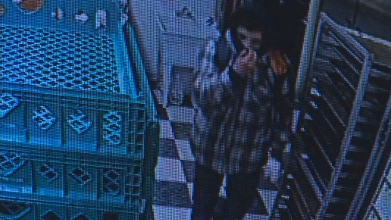 Salem business burglary suspect. (KPTV)