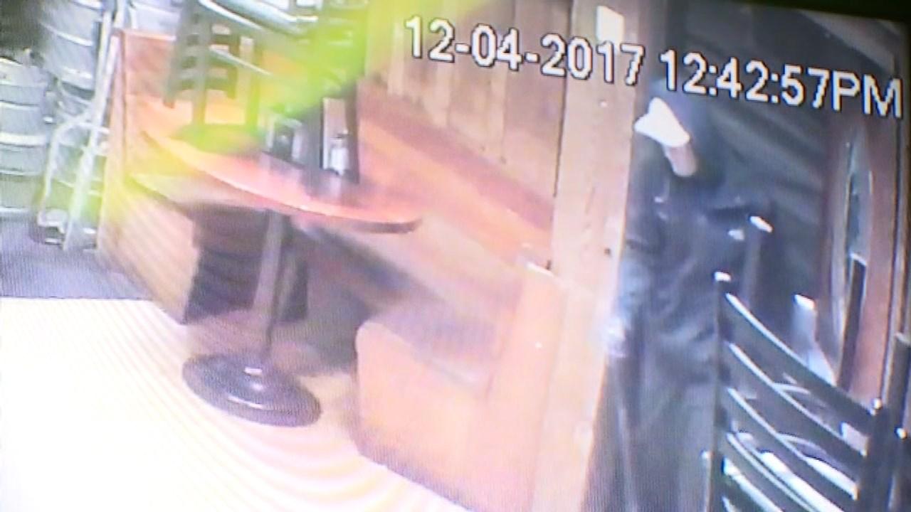 Cheerful Tortoise burglary suspect (KPTV)