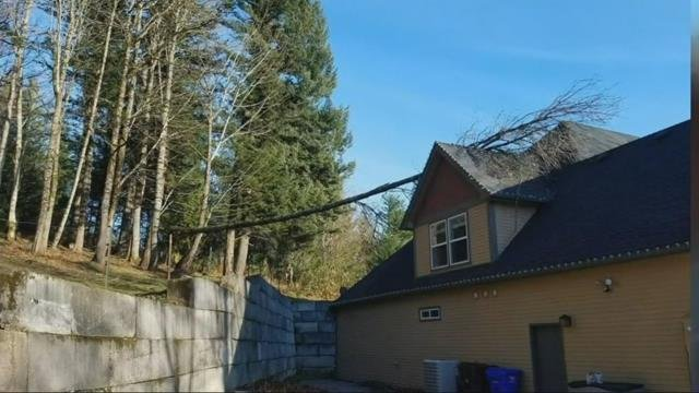 Strong Gorge wind gusts blow around Vista House visitors, knock over trees