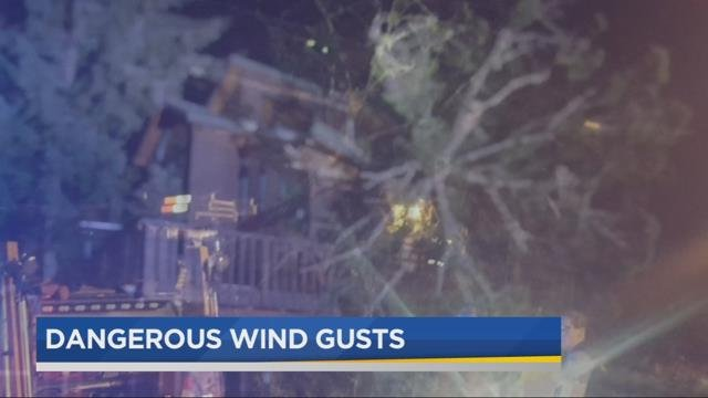 Woman hospitalized after tree falls on home in Corbett