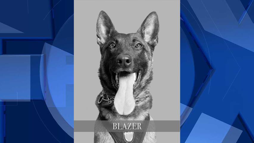 K-9 Blazer (Hillsboro Police Department)