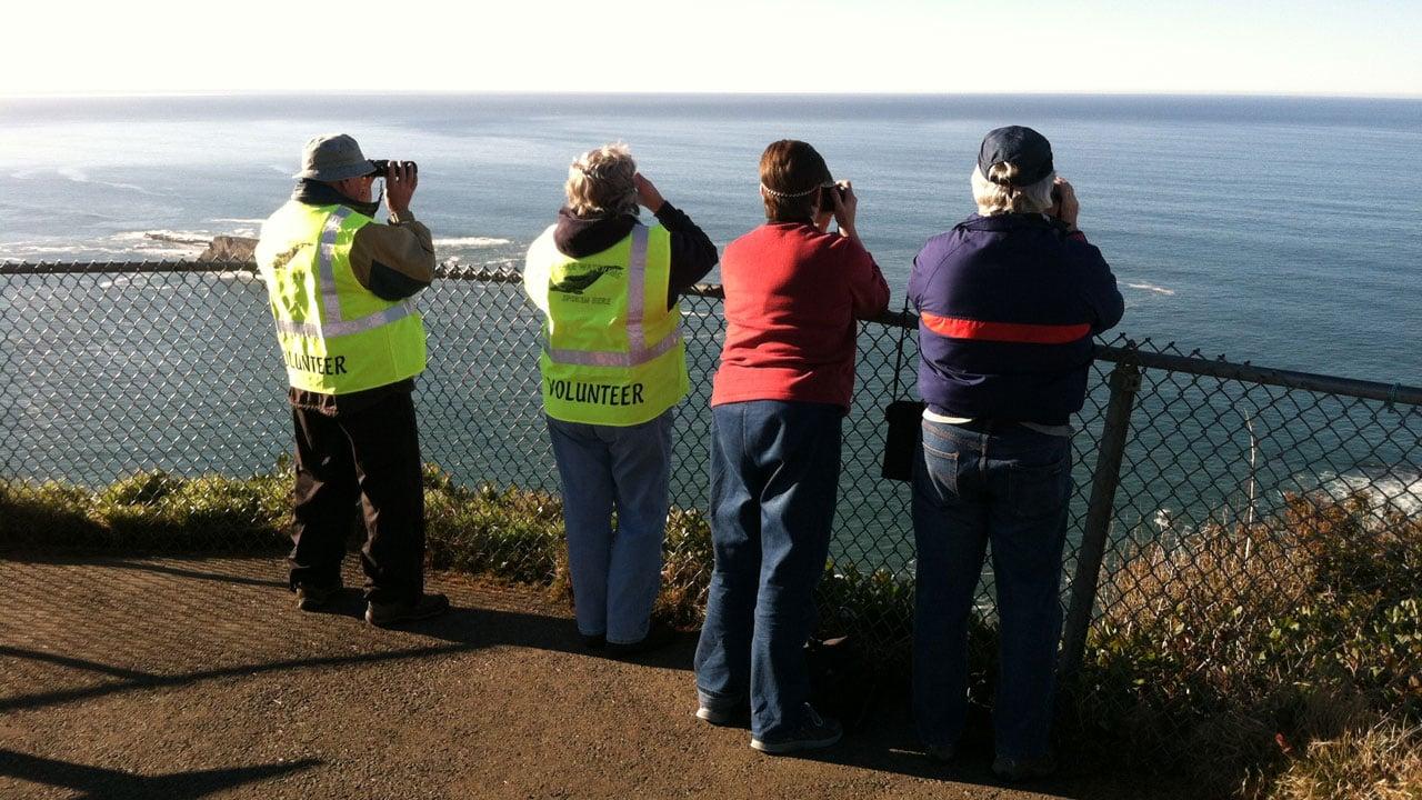 File image (courtesy Oregon Parks and Recreation Dept.)