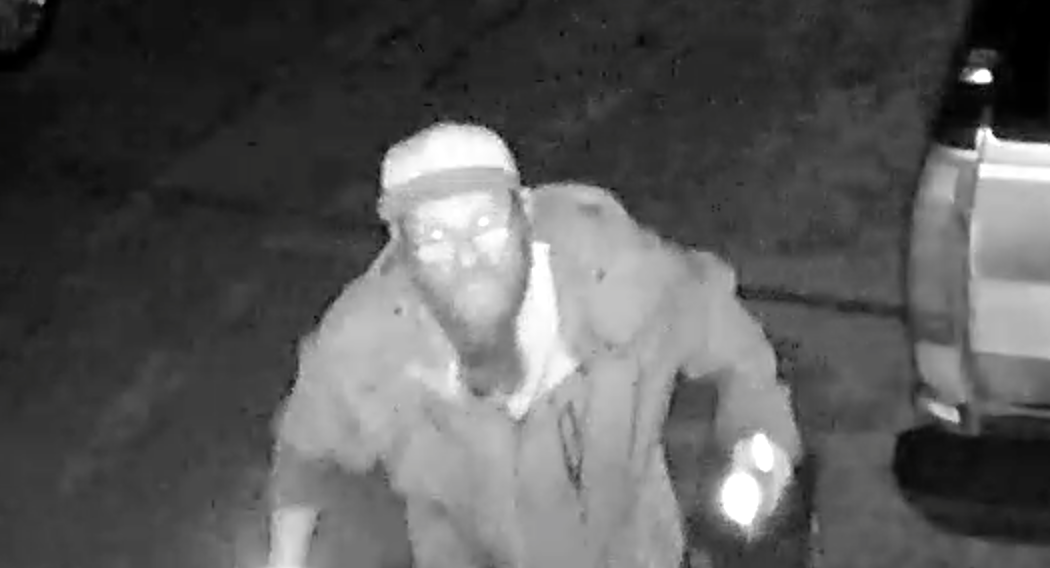 Surveillance image of one suspect.