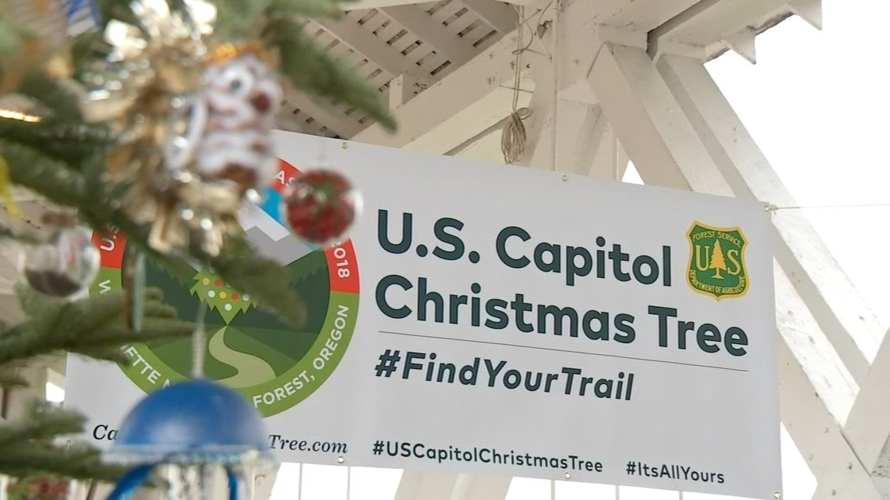 Oregon to provide US Capitol Christmas tree in 2018