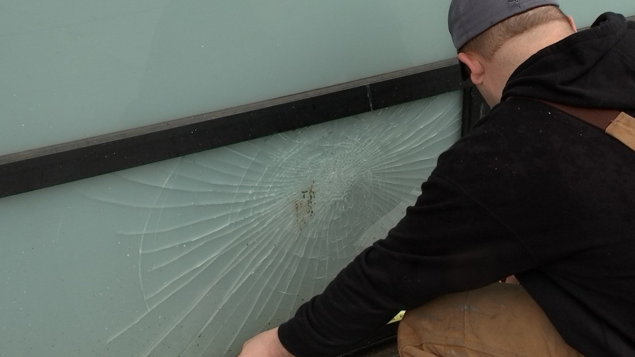 Damage done to a window at Quadrant Systems (KPTV)