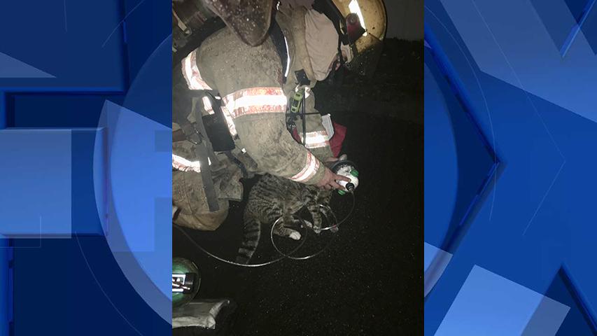 (Portland Fire & Rescue)