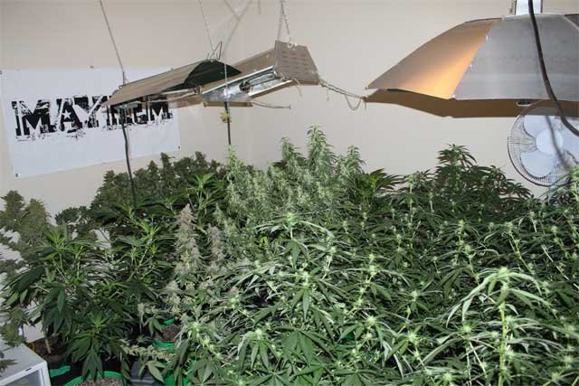 Photo courtesy Central Oregon Drug Enforcement