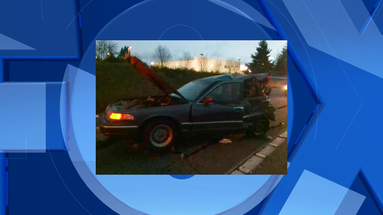 Damage to a Ford Crown Victoria (Image: Washington State Patrol)
