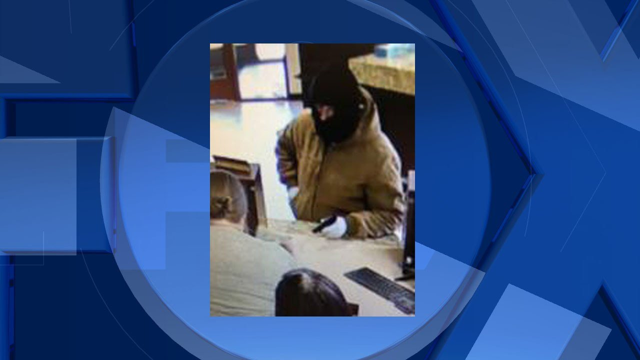 Bank robbery suspect  (Image: Albany Police Dept)