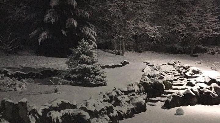 Viewer photo from Amboy, Washington