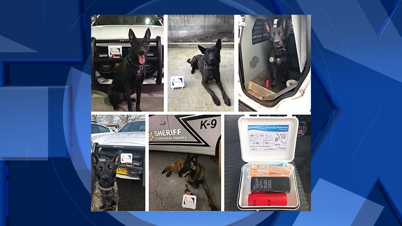 Image: Clackamas County Sheriff's Office