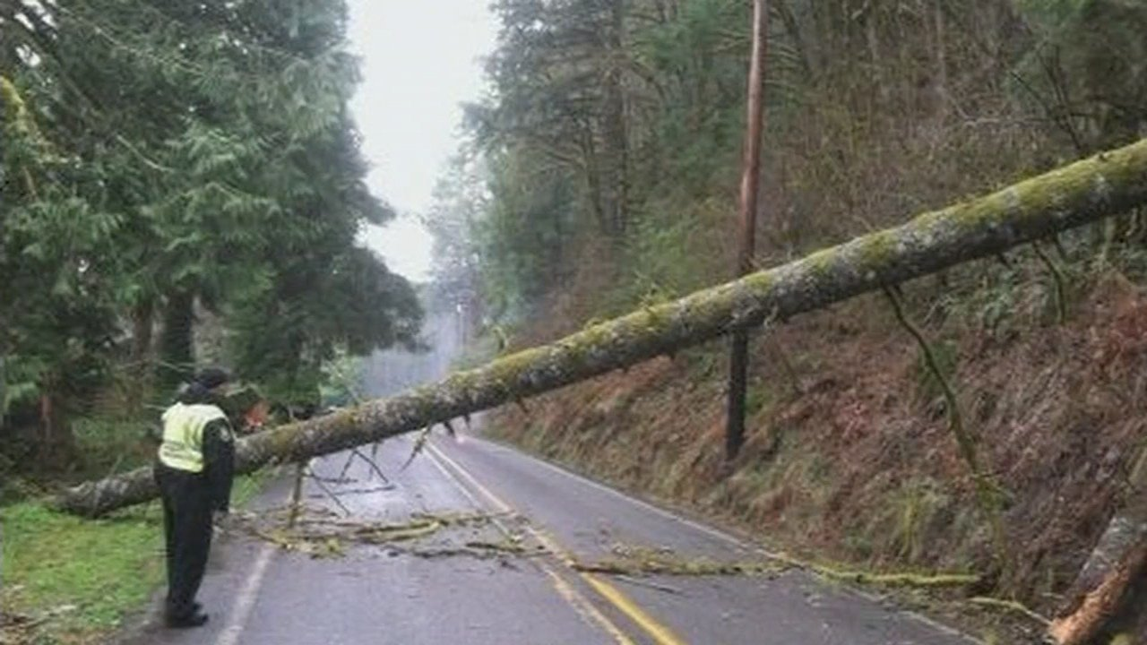 Last year's windstorm caused widespread damage and left thousands without power. (KPTV file photo)