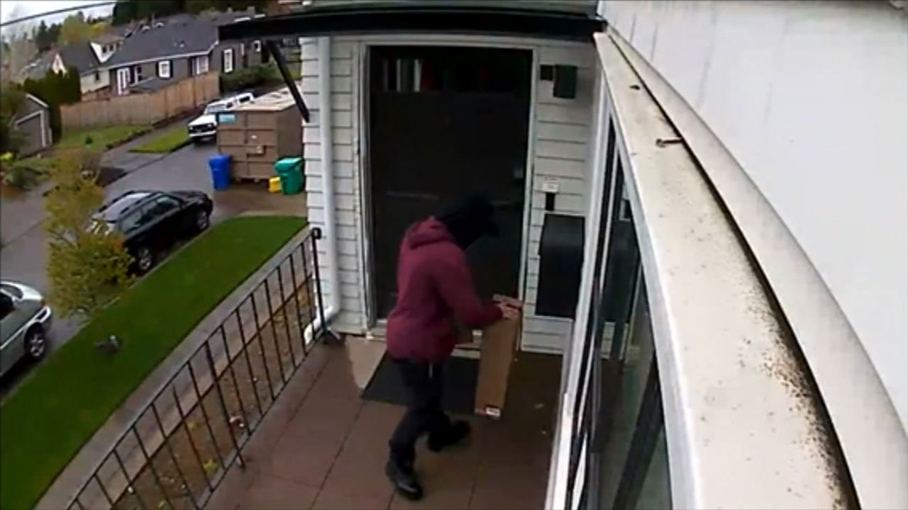 Surveillance image of suspected package thief.