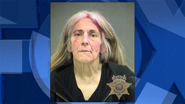 Cheryl Anne Shuster, jail booking photo