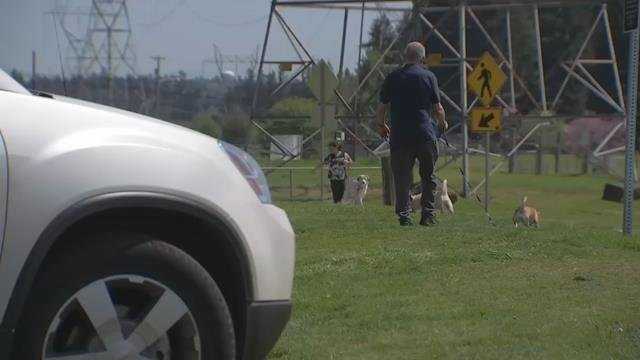 Thieves break into cars at dog park in Clark Co.,items stolen