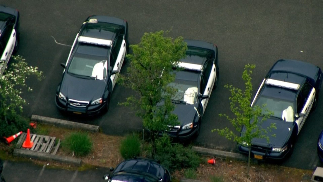 Paint dumped on almost two dozen police cars in Portland