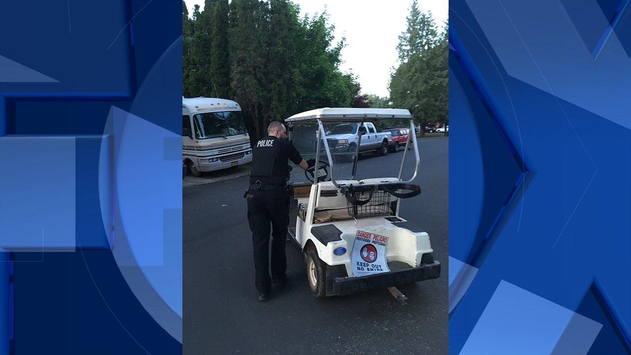 Golf cart that was stolen on Sunday (Image: Washington County Sheriff's Office)