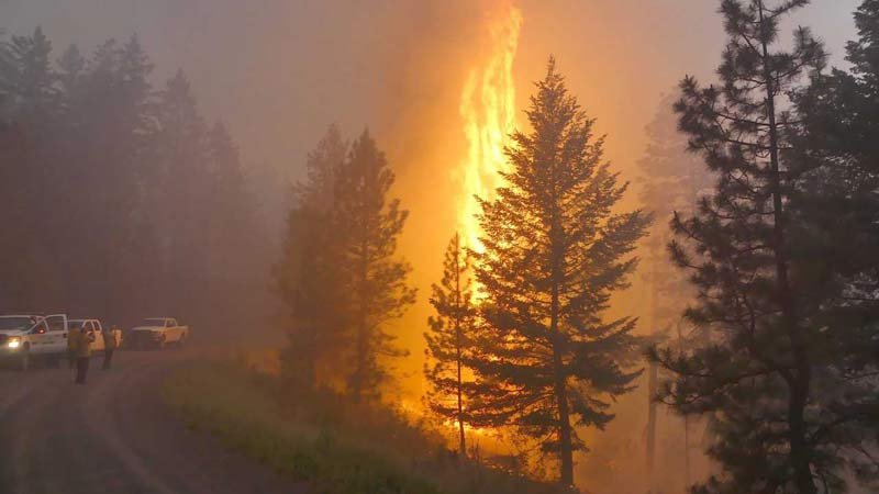 Central Colorado wildfire likely human-caused