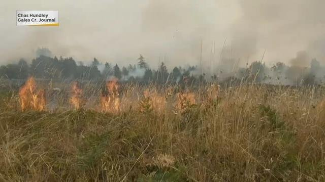 Firefighters contain 4-alarm brush fire near Forest Grove