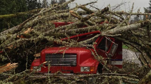 Tree hits Seaside fire truck