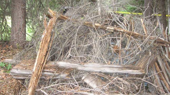 James DiMaggio camouflaged his car in brush, twigs, and logs in the Frank Church River of No Return Wilderness. (Photo: Ada County Sheriff's Office)