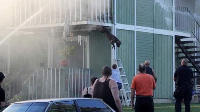 PHOTO: Dan Belderrain / McMinnville Fire Dept.