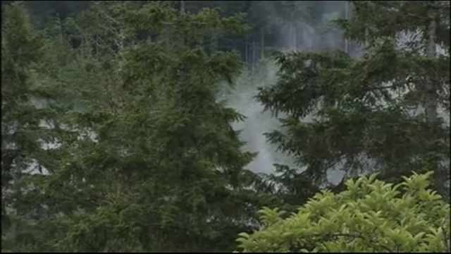 Smoke from crime scene, June file image