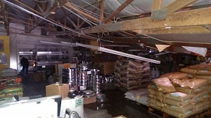 Picture taken inside Urban Farm Store after its roof collapsed.