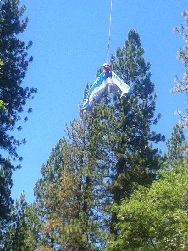 Paraglider rescued from tree. Photo: Jackson County Sheriff's Office
