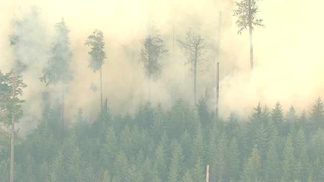 The 36 Pit Fire near Estacada had grown to 4,300 acres by Saturday morning.