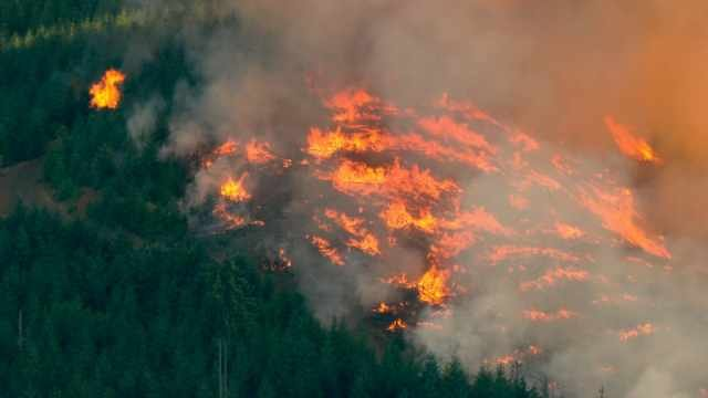 Wildfire near Hagg Lake is now 307 acres, evacuations still in order