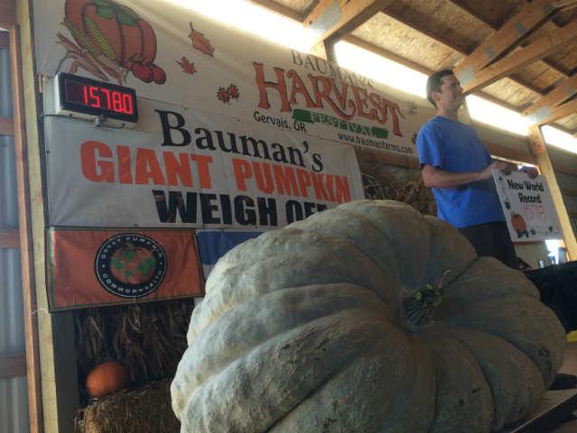 Photo Bauman Farms