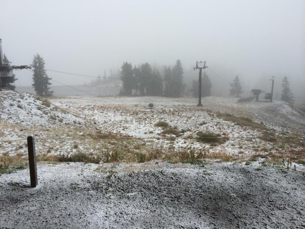 Sticking snow Wednesday at Timberline Lodge. (Photo: Timberline Lodge)
