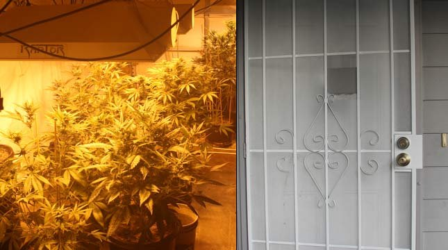Police: Vancouver pair dealing pot from front door to all ages