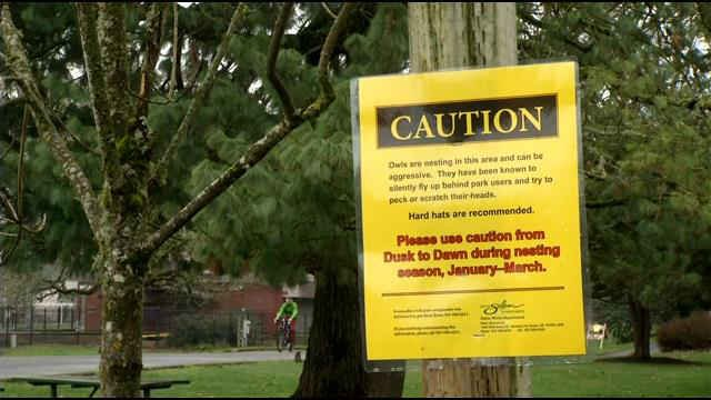 Warning signs posted at Bush Park in Salem