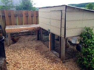 The DeWitt's backyard chicken coop in Sheridan.