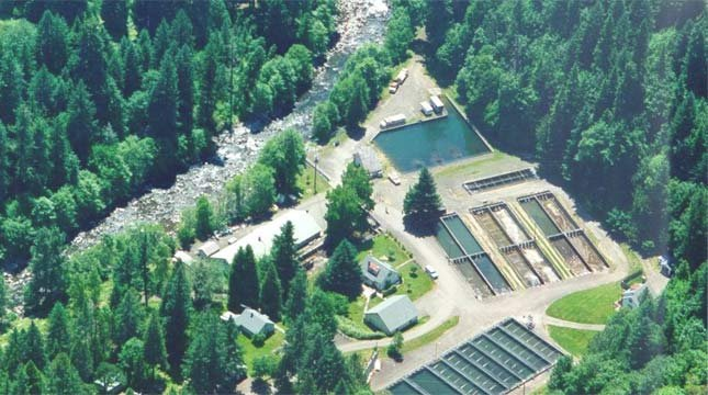 Rock Creek Hatchery. (Image source: Oregon Department of Fish and Wildlife)