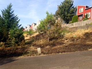 The brush fire that sparked in Gresham Friday.
